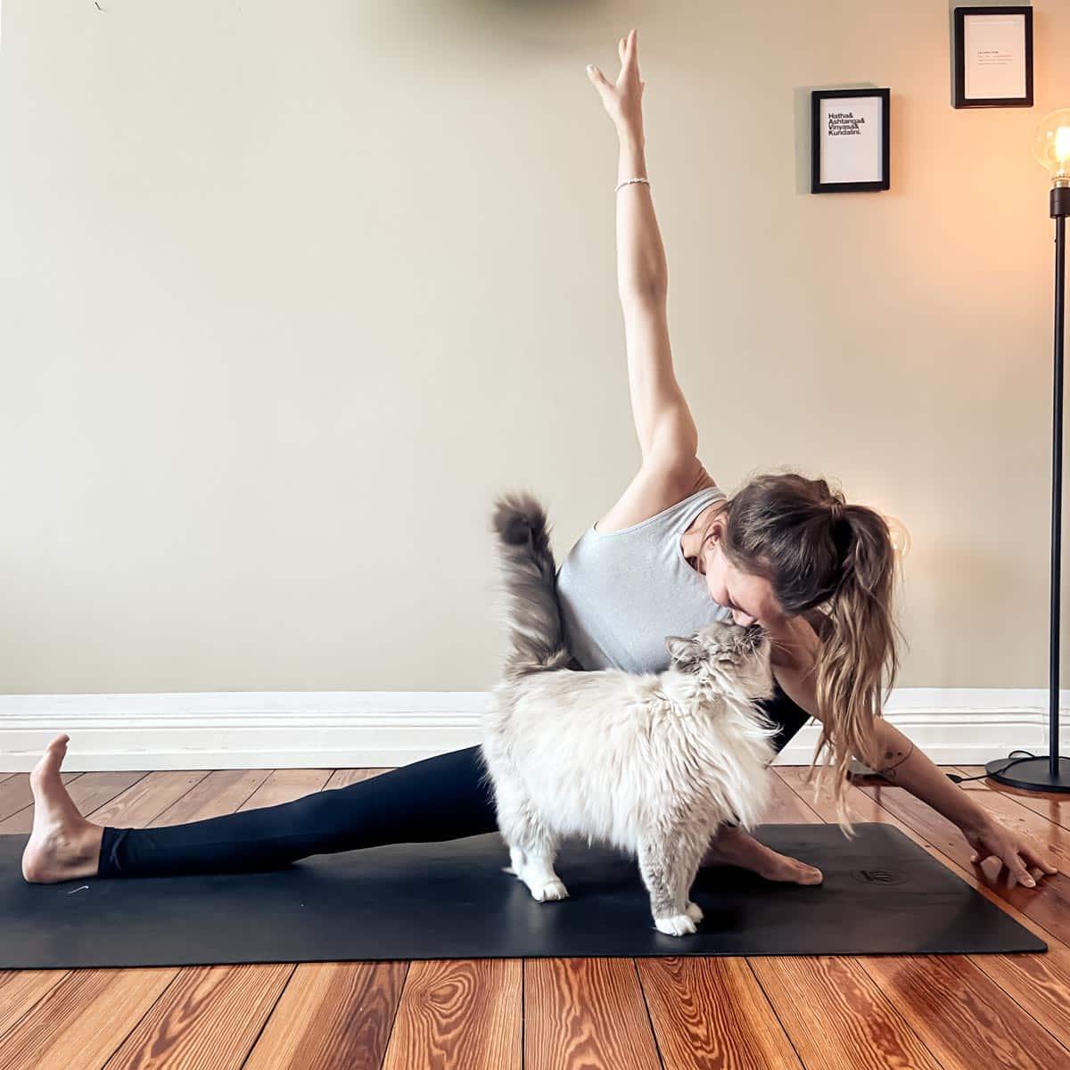 online yoga hamburg